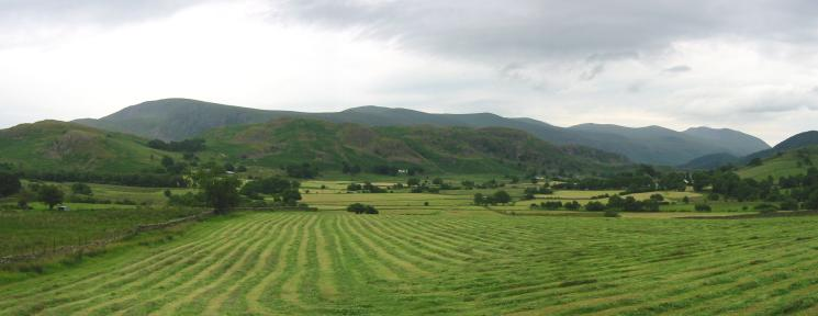 Looking back to High Rigg