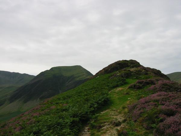 Looking towards Hindscarth from Scope End