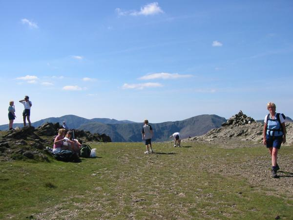Robinson's summit