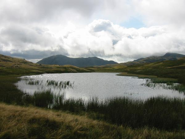 Wetherlam from Red Tarn