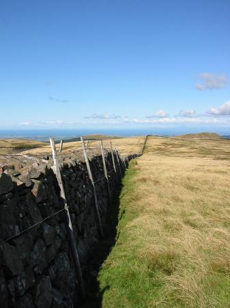 Wall on the top of Iron Crag