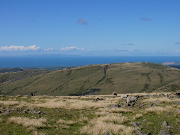 Lank Rigg with the Isle of Man on the horizon
