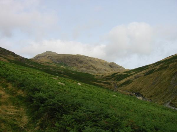 Looking back up Over Beck towards Red Pike