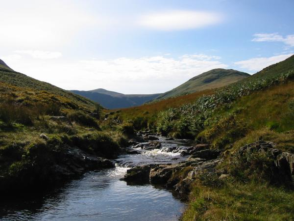 Looking up the beck with the conical top of Starling Dodd to the left of centre and Hen Comb to the right