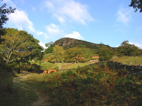 Nab Scar from near Rydal Mount