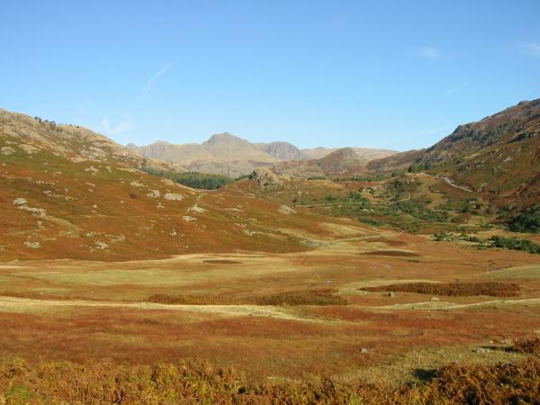 Looking across Blea Moss to the Langdale Pikes