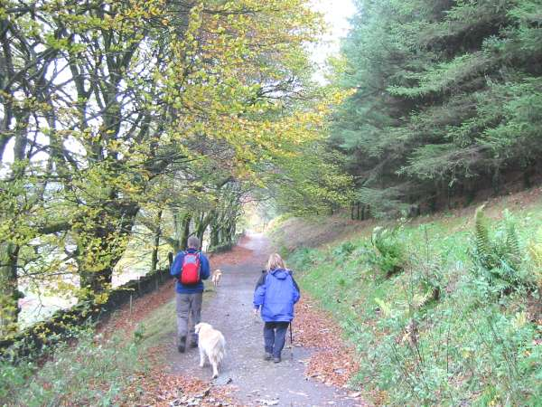Heading along the track to Cogra Moss