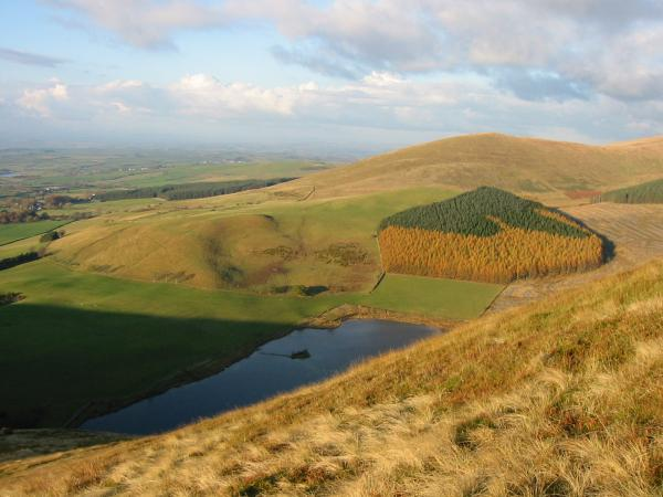 Looking down on Cogra Moss