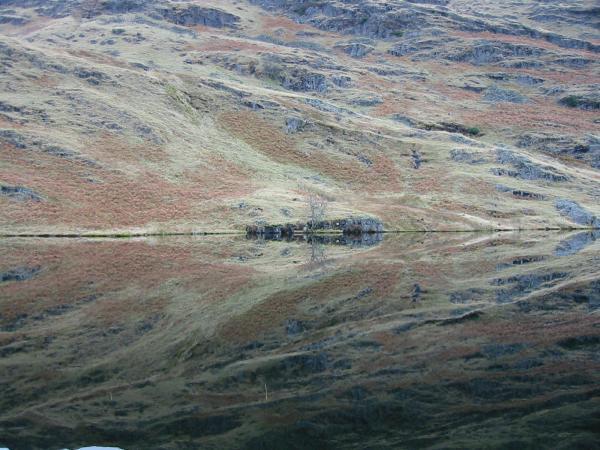 Reflections in Codale Tarn
