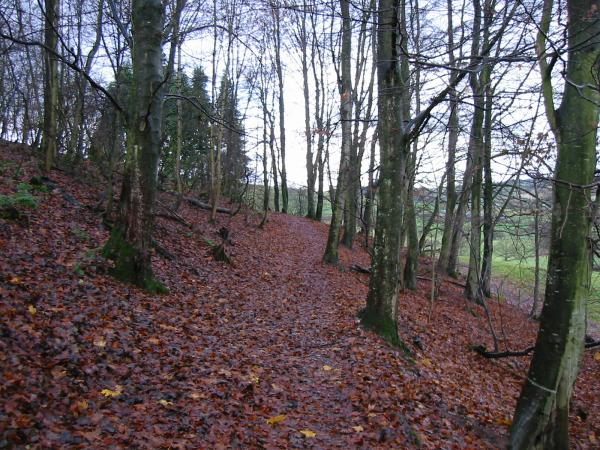 Path round and up the wooded hillside of Dunmallet