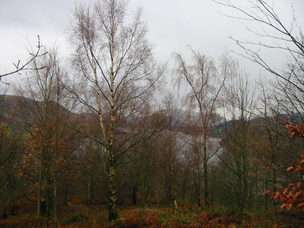 A glimpse of Ullswater on the descent