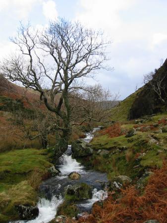 Rannerdale Beck