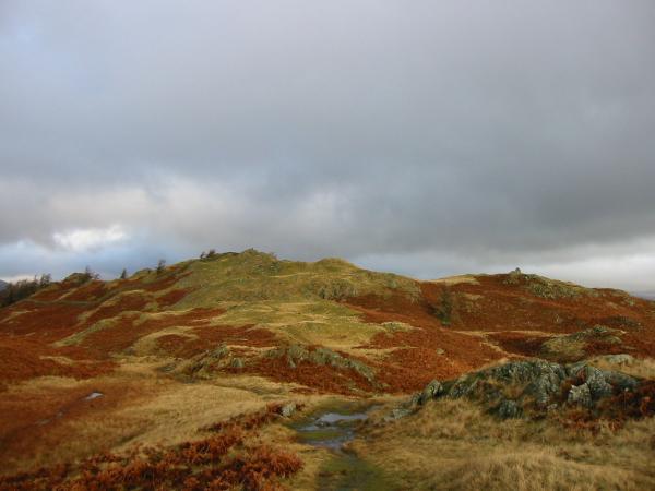 Looking towards Black Crag summit