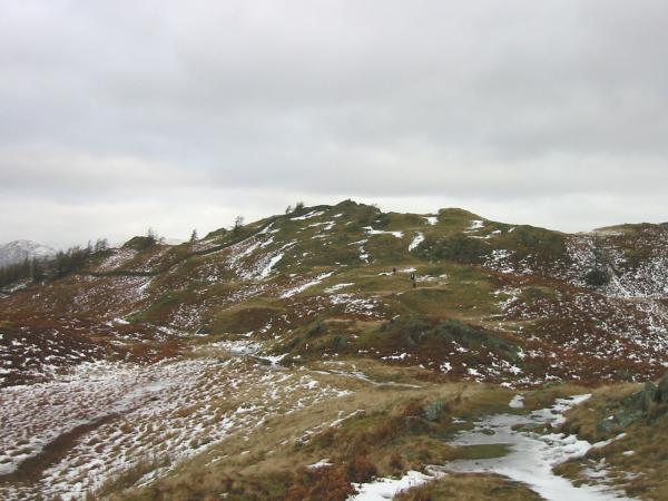 Looking towards Black Crag's summit