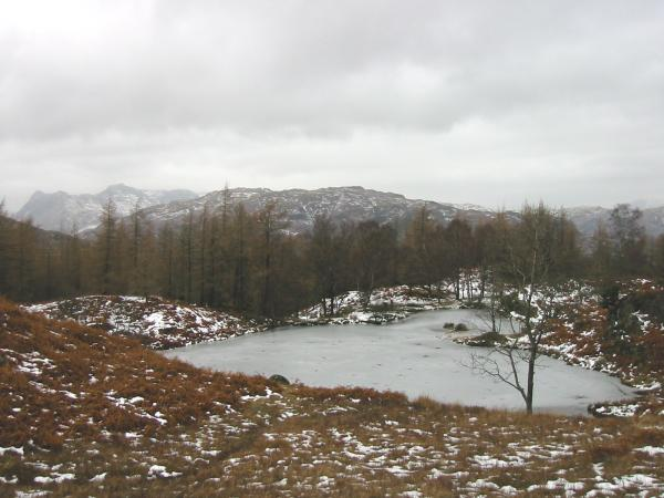 The Langdale Pikes from one of the old reservoirs, Holme Fell