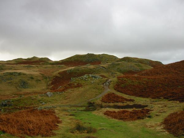 Looking towards Loughrigg Fell's summit