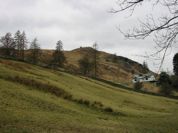 Hugill Fell and 'Hillside' (the bungalow) from the road