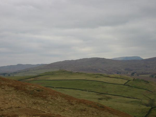 The view north. Williamson's Monument is the near top in the fields