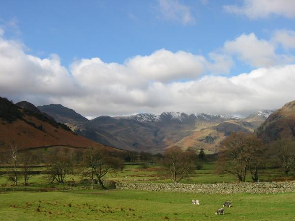 Crinkle Crags from near Pye Howe, Great Langdale