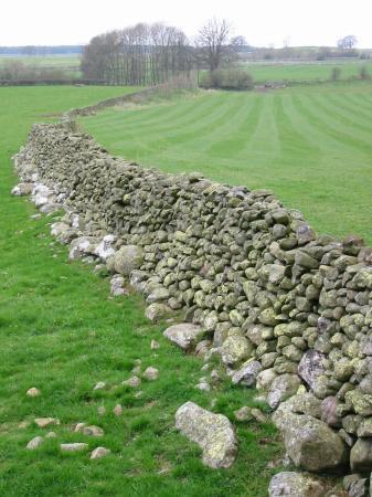 Limestone dry stone wall