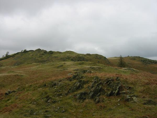 Looking towards Black Crag's summit