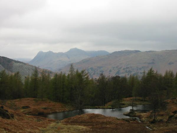 The Langdale Pikes from Holme Fell