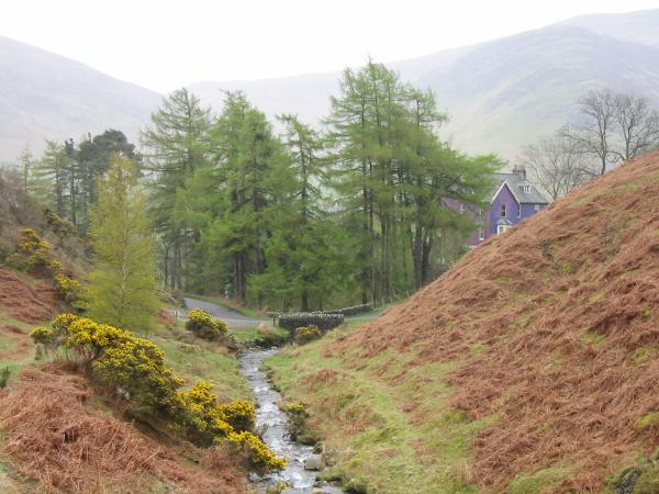 Rigg Beck, the purple house on the Newlands road