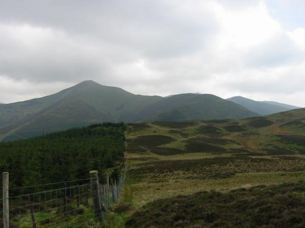 Grisedale Pike from Tarbarrel Moss Knotts