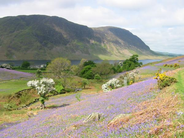 ..and looking back, with Mellbreak seen across Crummock Water