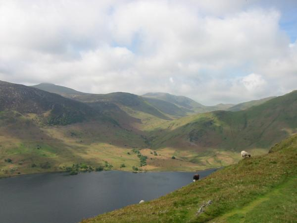 Starling Dodd and Great Borne seen across Crummock Water