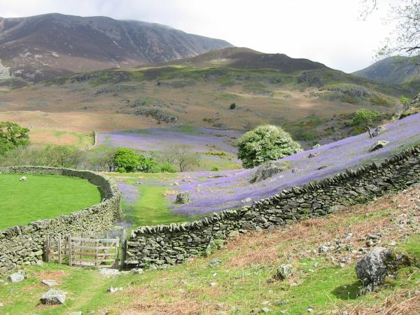...back into Rannerdale