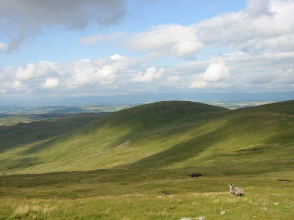 Selside Pike and the flanks of High Howes
