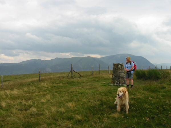 Fellbarrow summit