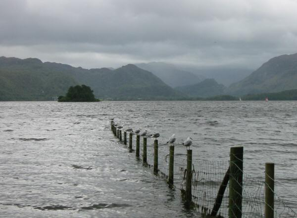 Looking south to the head of Borrowdale
