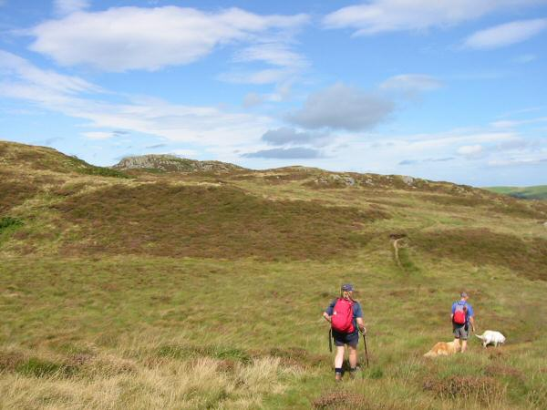 Heading towards Gowbarrow Fell's summit