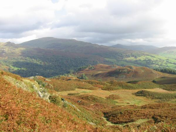 Low Pike (far left), the bulk of Red Screes and the pointed top of Ill Bell from Loughrigg Fell