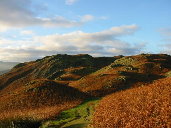 Looking back towards Loughrigg Fell's summit