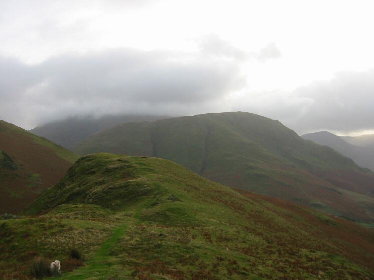 Looking along Low Bank to High Snockrigg
