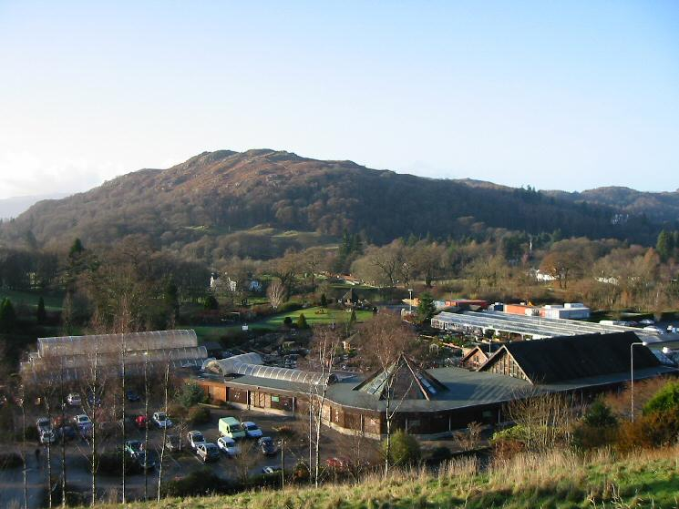 Loughrigg Fell from above Hayes Garden World
