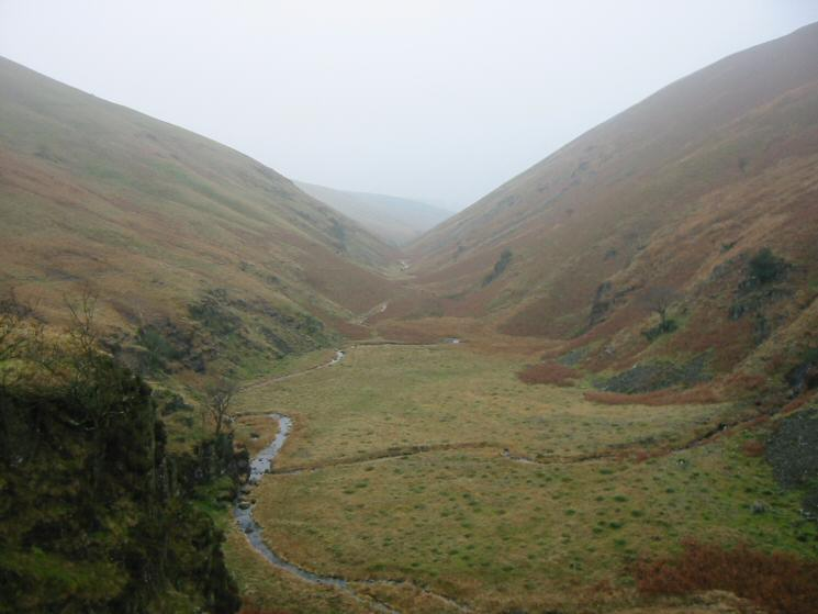The head of Miterdale