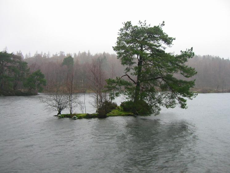 A wet and windy Tarn Hows