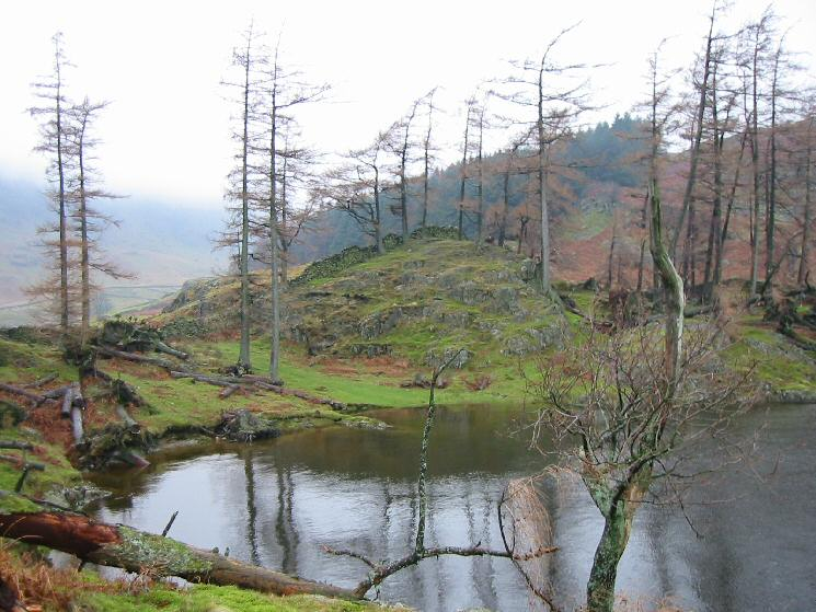 Haweswater shoreline at Speaking Crag