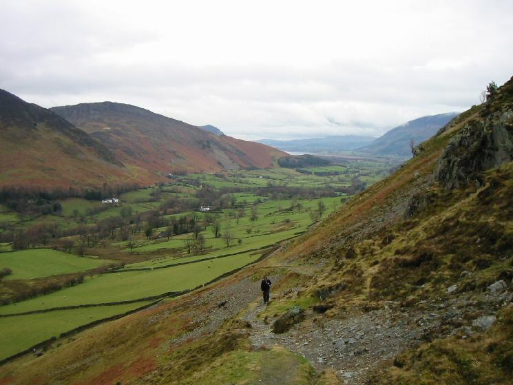 Above Newlands on the slopes of Catbells