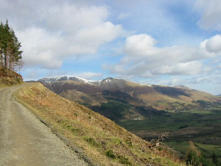 Skiddaw and Skiddaw Little Man from Whinlatter Forest