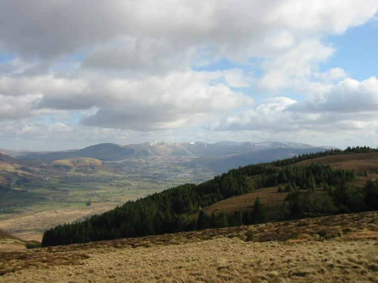 Whinlatter Forest with the Helvellyn Ridge in the distance from Lord's Seat