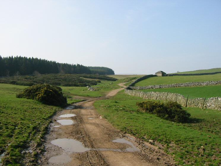 The track up onto the fells from Askham