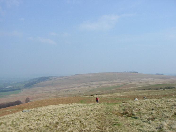Ascending Barton Fell with Heughscar Hill behind