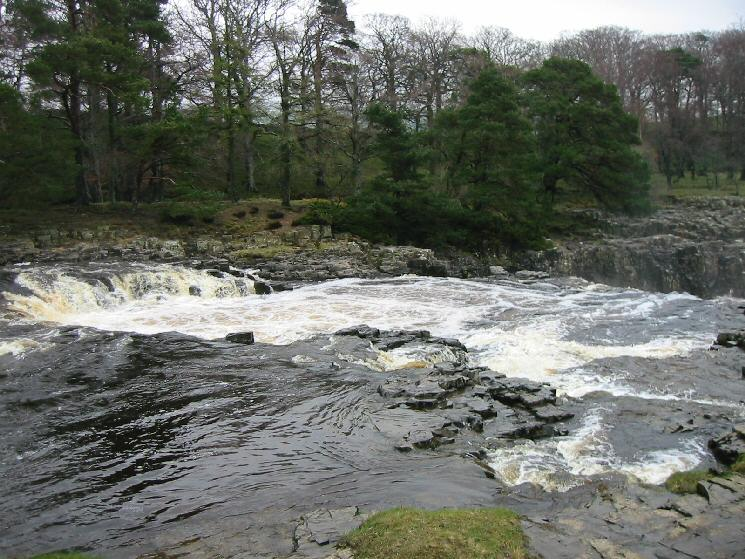 The top of Low Force