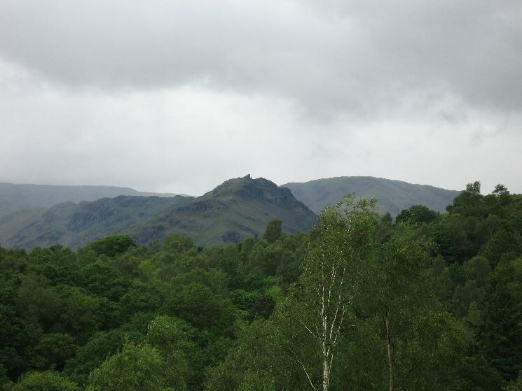 Helm Crag seen over Baneriggs Wood