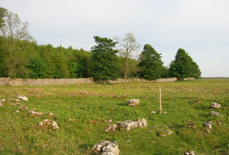 Stone Circle on Knipescar Common